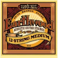 ERNIE BALL 2012 Medium Струны для 12-ти струнной гитары